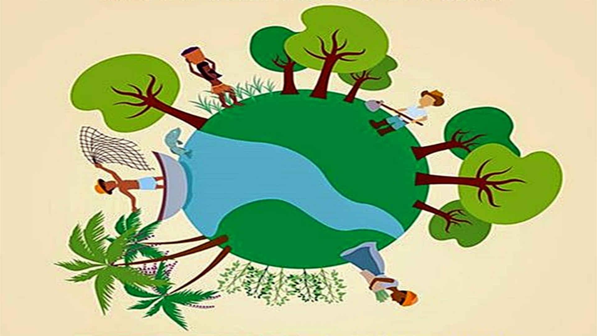 Agroecologia: princípios básicos de promoção à saúde - 1ª Edição