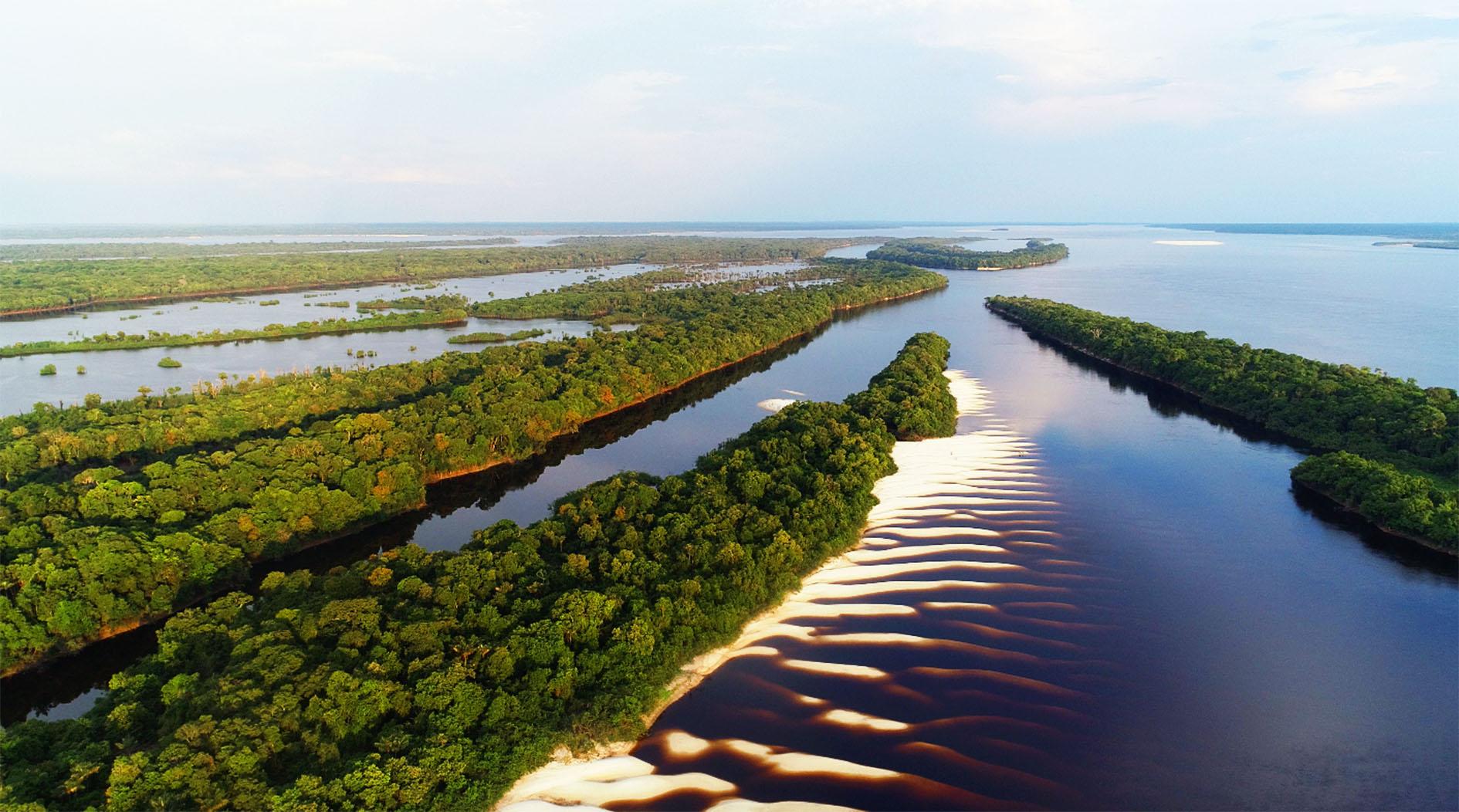 Projeto sobre biodiversidade brasileira é contemplado em edital da Faperj