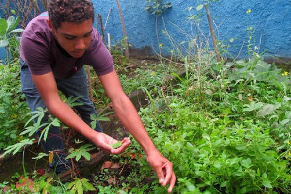 Fiocruz Mata Atlântica firma parceria com escola para transformar práticas alimentares de estudantes