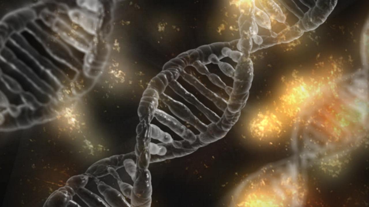 Biologia molecular forense