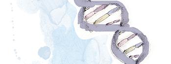 Ensaio Cometa para Avaliação de Dano ao DNA