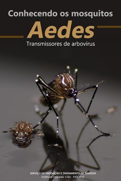 Filme da Fiocruz sobre os mosquitos Aedes é premiado no concurso internacional Videomed 2018